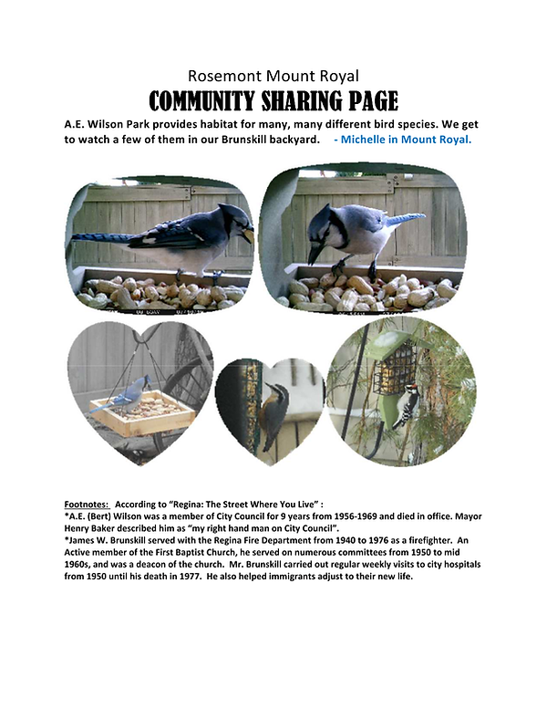 Community Sharing Page Birds Michelle.pn