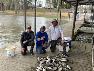 Scattered Fish and Windy Weather