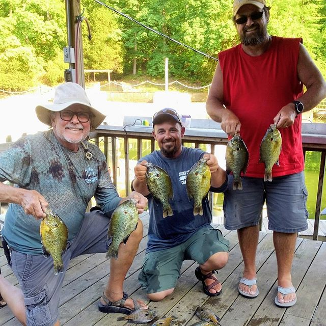 Good day of perch jerkin with David and