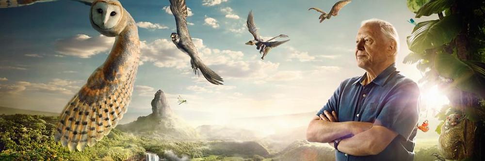 David-Attenborough-Conquest-of-The-Skies-Keyart-LB-1.jpg