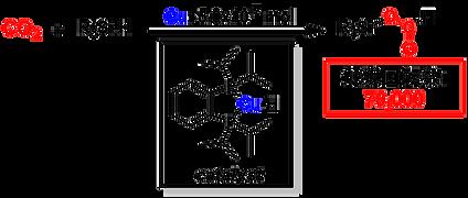 東京工業大学 物質理工学院 応用化学系 本倉健研究室 二酸化炭素 錯体触媒