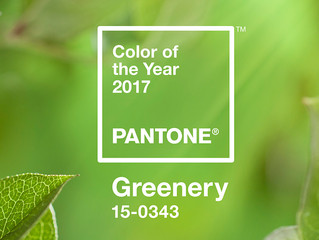How The 2017 Color of The Year Can Transform Any Room