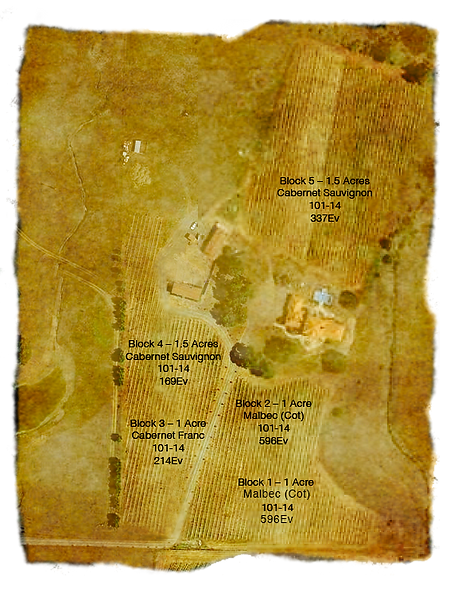 02.26.2019_Cadden Family Vineyard Map_Up