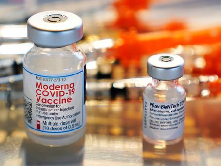 화이자 모더나 백신 접종자 효과 수년간 지속