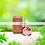 Thumbnail: Lunes Honey & Flower Collagen Booster Ampoule 30ml.