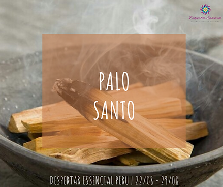 Palo Santo.png