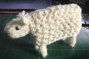 Lynne Harper texel sheep