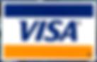 visa_PNG17.png