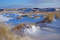 Die Dünen von Amrum im Winter