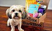 Barkbox Image.jpg
