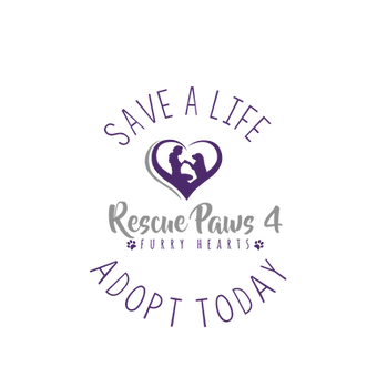 rp4fh adopt today button.png