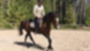 jani-ratsastaa-2018-05-11.png