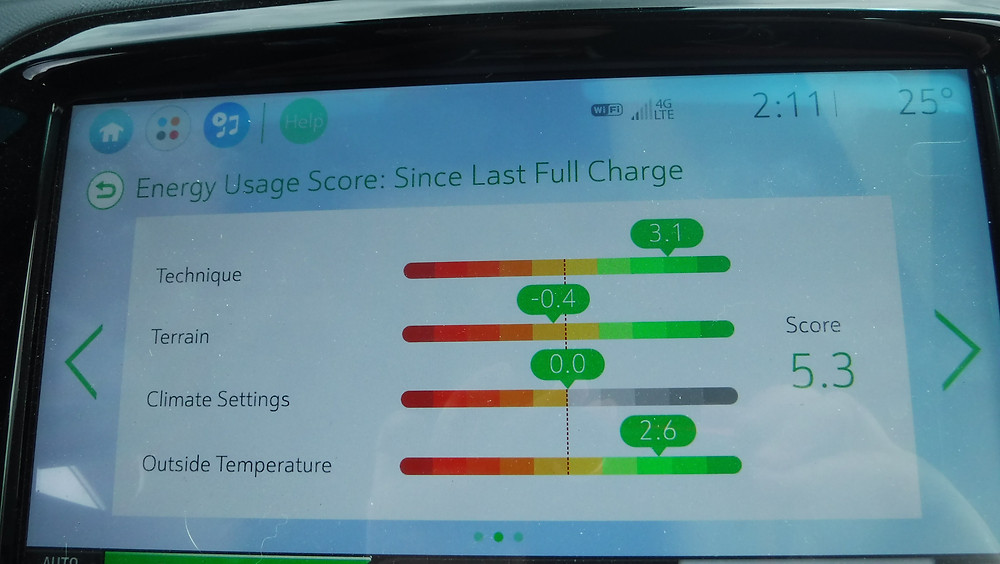 Bolt energy usage gauge