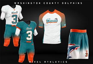 dolphins package mock.jpg