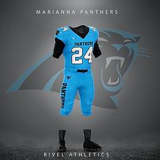 panthers blue.jpg