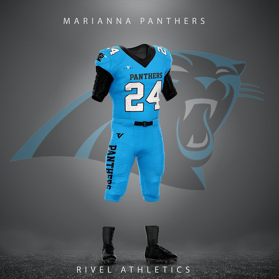 panthers blue.jpg
