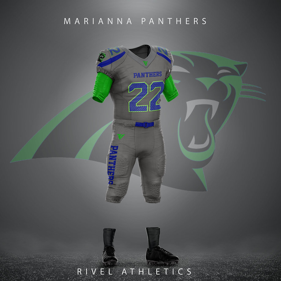 panthers seahawk grey.jpg