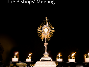 Homily: A Gospel View of the Bishops' Meeting