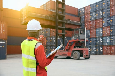 Pre-customs-clearance-Inspection-540x360