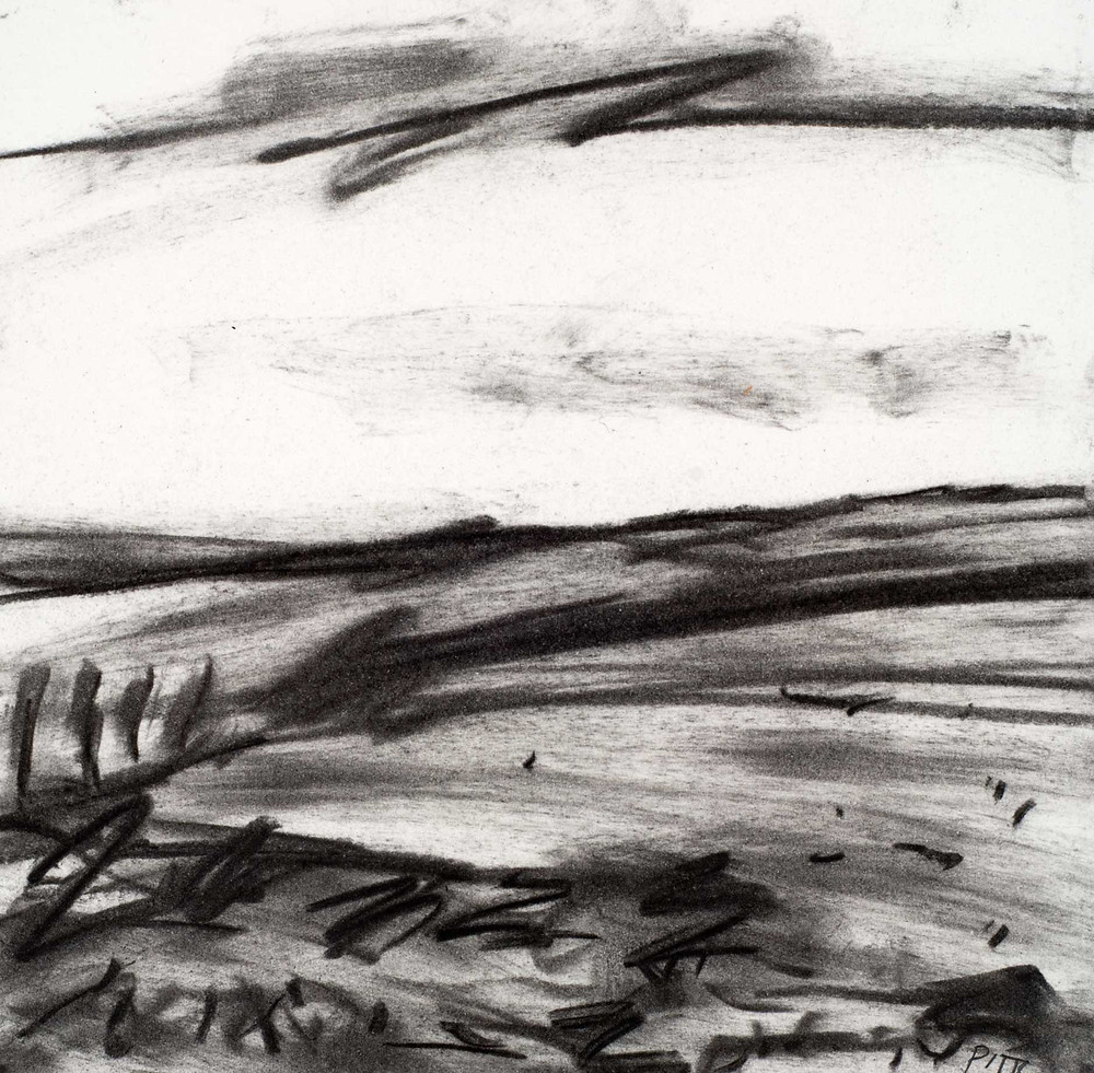 Rain passing the Five Mile Drive. Pencil on paper. 19cm x 19cm. Jonathan Pitts winner of the 2nd prize at the Sunday Times Watercolour competition.