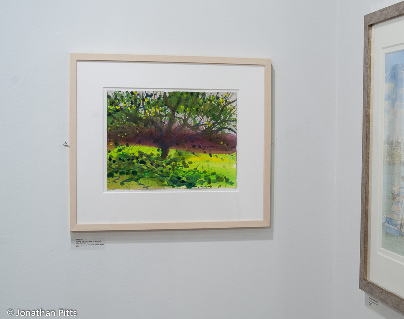 Jonathan Pitts plein air mixed media paintings on display in the short listed artists room at the Sunday Times Watercolour Competition 2011 at the Mall Galleries. Painting of an apple orchard in Evesham