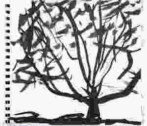 Jonathan Pitts ink sketch, Oak tree in Runnymede