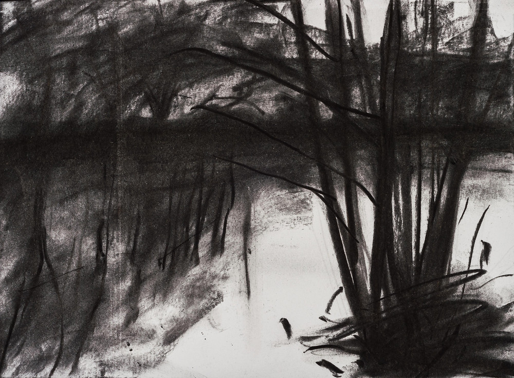 Charcoal Drawing on Paper of the River Thames near Marlow by Jonathan Pitts.