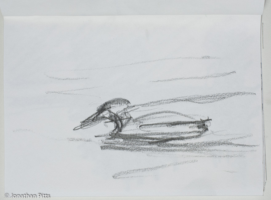 Jonathan Pitts Sketch of . Jonathan has won the Sunday Times Watercolour competition 2nd prize.