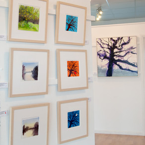 Exhibition at Pure Art Gallery in Pembrokeshire