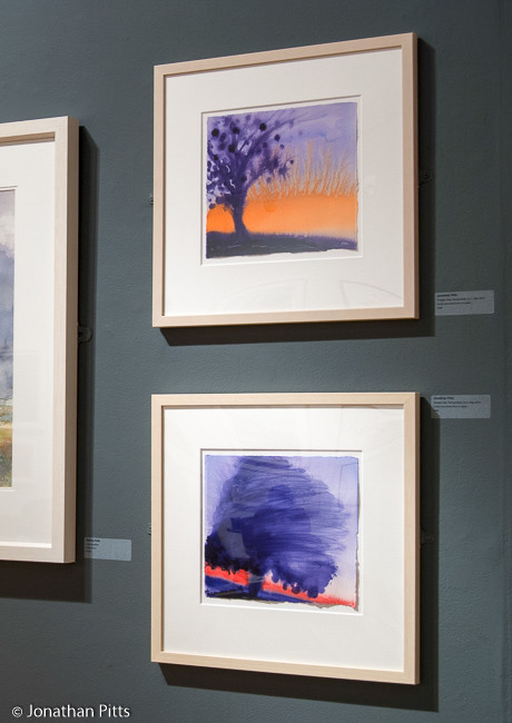 Sunday Times Watercolour Competition 2014 the Mall Galleries London painting by Jonathan Pitts