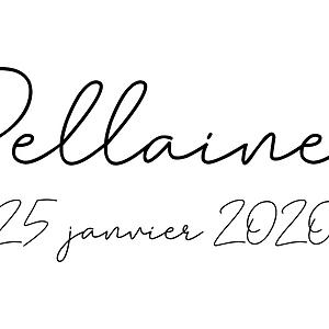 Pellaines 2020