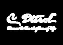 dttrol white logo.png