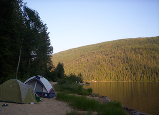 Camping and Concerts