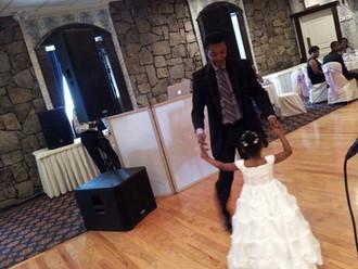 Wedding DJ Statistics