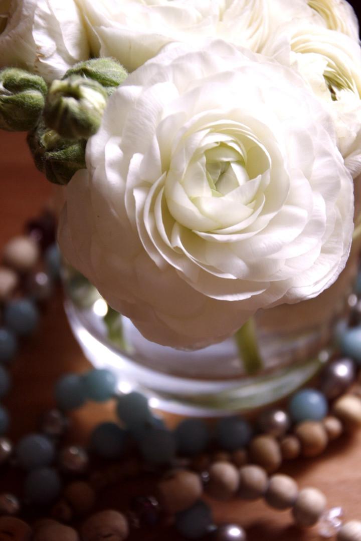 _MG_6062.jpg