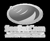 SeaSatCom-Logo-558x458_edited.png