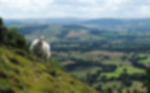 View from the Long Mynd by Elizabeth Sillars