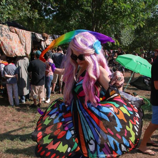 Alli Blotter Butterfly Costume Austin Te