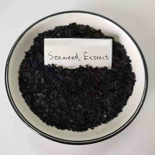 Seaweed Extracts Fertilizer