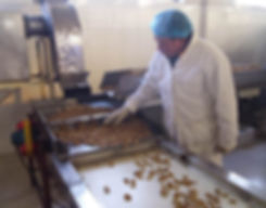 walnuts factory romalimited