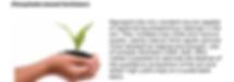 Phosphate Based Fertilizers