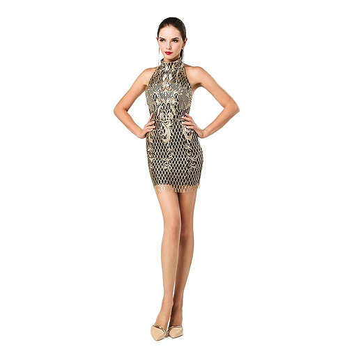 Embroidered & Sequined Sexy Dress
