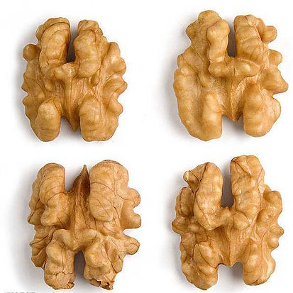 walnuts  romalimited