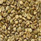 Coffee Beans Screen 18