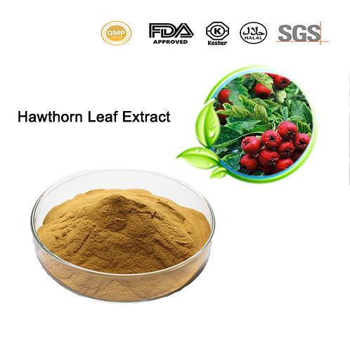 Hawthorn Leaf Extract Vitexin