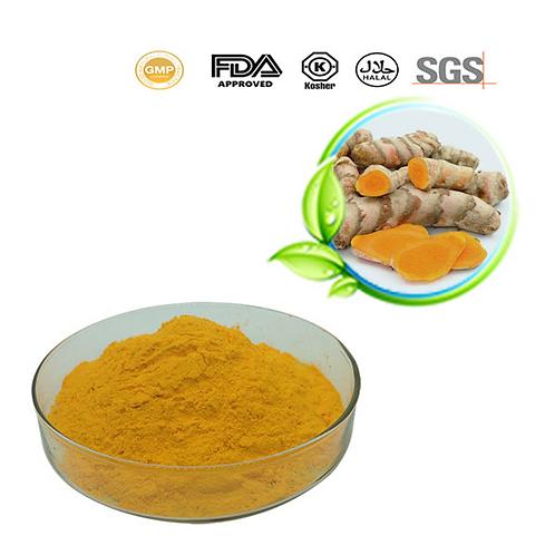 Turmeric Extract Powder