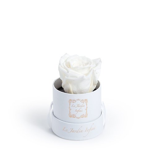 Single White Preserved Rose - Small Round White Box