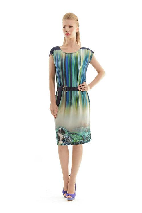 Cap Sleeved Print Dress