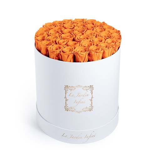 Orange Preserved Roses - Large Round White Box