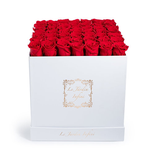 Red Preserved Roses - Large Square White Box